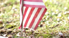 American flag in ground nature background Stock Footage