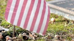 American Flag with grave stone in background Stock Footage