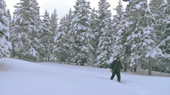 Man in Snowshoes Hiking with Pack through Snowy Forest Stock Footage