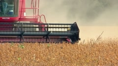Combine harvesting soybeans Stock Footage