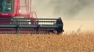 Stock Video Footage of Combine harvesting soybeans