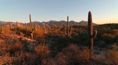 Arizona Desert Landscape Sunset Stock Footage