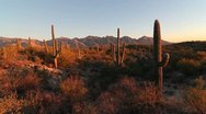Stock Video Footage of Arizona Desert Landscape Sunset