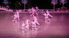 Winter Wonderland on Ice, Seaworld Stock Footage