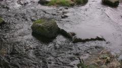 Stream on mossy rocks Stock Footage