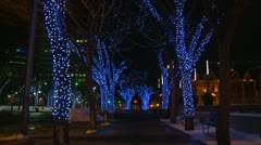 Christmas light decorated trees in downtown Stock Footage