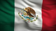 Mexican Flag HD. Looped. - stock footage