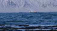 Stock Video Footage of Icelandic Fishing Boat, Snowy Fjord Beach seaweed