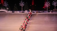 Stock Video Footage of Winter Wonderland on Ice, Seaworld