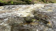 Stock Video Footage of Rapids at autumn