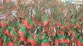 PTI Rally in Karachi, Pakistan Footage