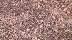 Tilt up to 300zx from gravel Stock Footage