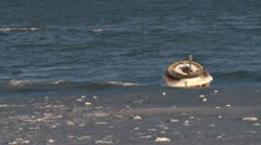 Ice Encrusted Navigation Buoy Bobbing in Waves Stock Footage
