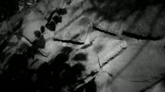 Swing leaves silhouette shadow on stone wall at night. Stock Footage