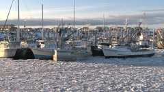 Tilt up to Frozen Harbor Scene Stock Footage