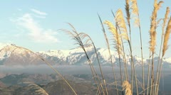 Snow capped mountains, Wanaka Stock Footage