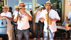 Cuban musicians singing and playing instruments Stock Footage