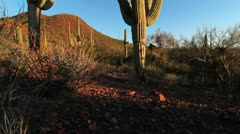 Desert Vista Crane Shot Stock Footage