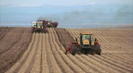 Stock Video Footage of Potato harvester and digger 29.97p