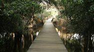Stock Video Footage of Bridge on pond in Neak Pean, Angkor Temple