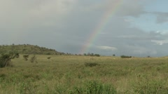 Rainbow in the park with animals in the back ground Stock Footage