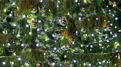 Christmas tree - in front of St. Peter's Basilica Stock Footage