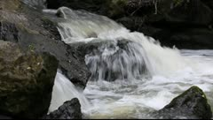 Water running in a mountain creek Stock Footage