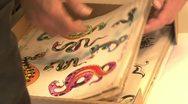 Tattoo flash - image plates - close ups Stock Footage