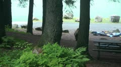 Grizzly bear, campground Stock Footage