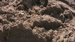 Soil, close up Stock Footage