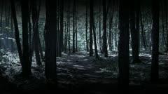 Running in dark woods Stock Footage