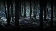 Stock Video Footage of Running in dark woods