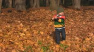 Stock Video Footage of Boy robs leaves