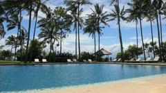 Tropical swimming pool with palm trees - stock footage