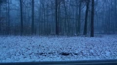 Mammoth Cave Blizzard as Seen Through the Trees Stock Footage