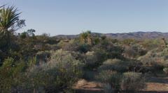 High Desert 4 Stock Footage