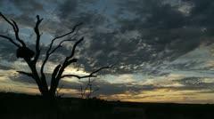 Kalahari Timelapse2 Stock Footage