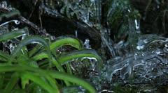 Ice plants 1 140112 Stock Footage