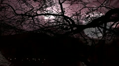 Timelapse thunderstorm with leafless bare tree and full moon Stock Footage