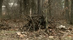 Pile of branches Stock Footage