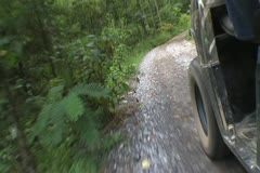 Baggy Rides On Forest Trail Stock Footage