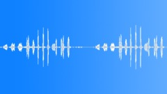 Tit-babbler calling Sound Effect