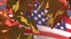 Stock Video Footage of Front Porch Oak PST 0479 01