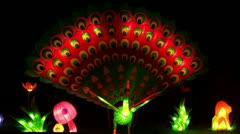 Chinese Lantern Of A Peacock - stock footage