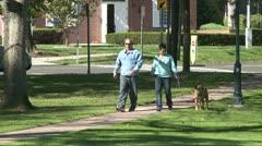 Couple walking dog on sidewalk around park (1 of 3) - stock footage