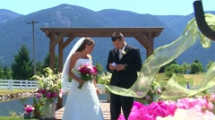 Bride and Groom at the Altar 1 Stock Footage