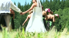Bridal Party in the Field 1 Stock Footage
