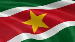 Surinamese flag in the wind Stock Footage
