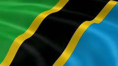 Tanzanian flag in the wind Stock Footage