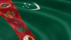 Turkmen flag in the wind Stock Footage
